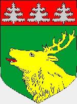 история города Йыхви (Эстония)