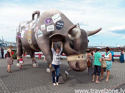 Парад коров в Вентспилсе (Вентспилс, Латвия)